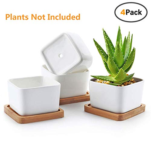 Succulent Pots,OAMCEG 3.54 inch Square Design for Succulent/Cactus,Set of 4 White Ceramic Succulent Cactus Planter Pots with Bamboo Tray(Plants NOT Included) (Square Planter Pots)