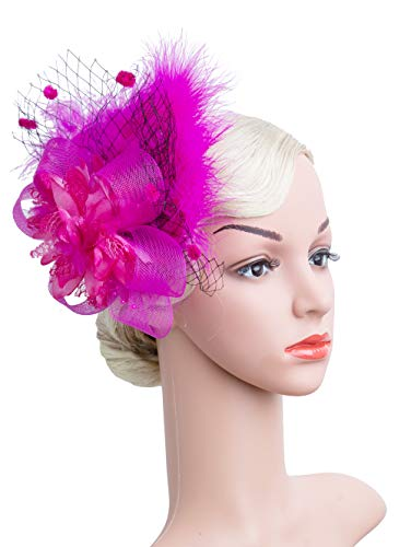 Women's Fascinators Hat Hair Clip Feather Wedding Headware Bridal 1920s Headpiece(rose) for $<!--$10.29-->