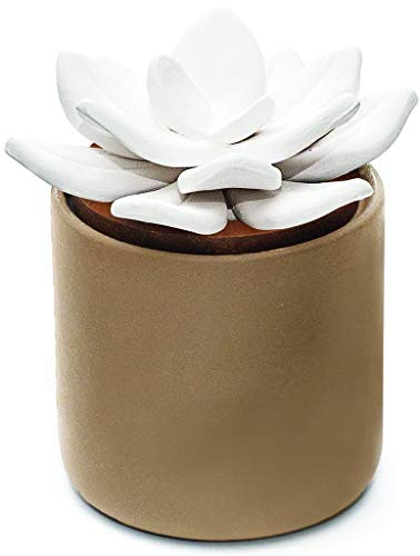 Edens Garden Taupe Ceramic Bloom Diffuser, Best Hand-Crafted Wick Essential Oil Diffuser For Aromatherapy (Best For Home & Office)