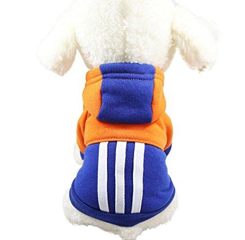 YOMXL Fashion Color Block Patchwork Hoodie Sweater Cute Pet Dog Cat Warm Clothes Short Sleeve Striped Decor Pullover Sweatshirt For Pet (XS, Blue)