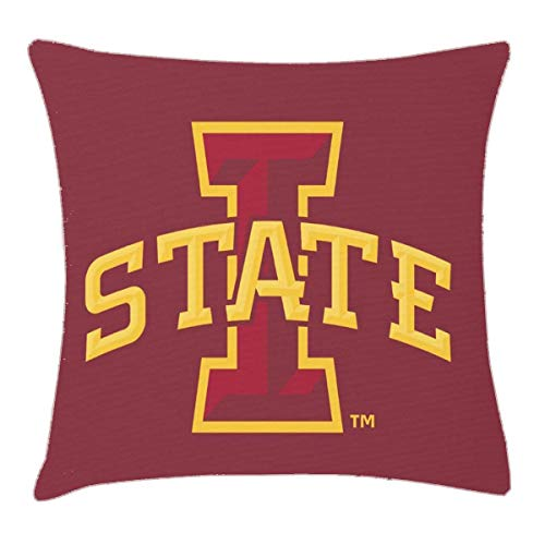 - HFYZT Iowa State University Iowa State Arched Logo Pillow Cover Standard Throw Pillowcase 18X18 Inch