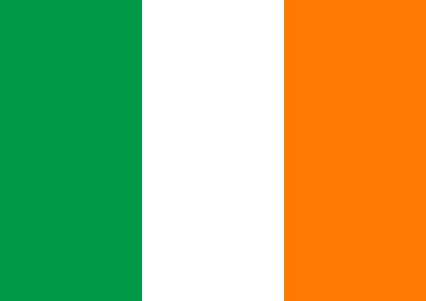 Toland Home Garden Flag of Ireland 28 x 40 Inch Decorative Country Nation House Flag
