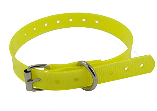 EveryPet Replacement Dog Training Collar Strap Band Buckle 3/4