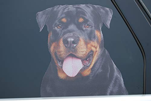 Doggie in the Window car and truck window dog decal - Rottweiler