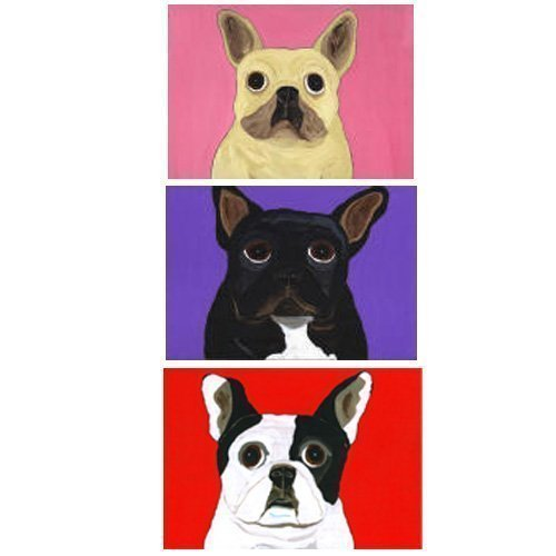 French Bulldog Note Cards - 3 Designs - Fawn - Black - Pied ~ Set of 10 ~ Mix and Match ()