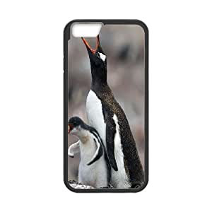 Stevebrown5v Penguin iPhone 6 Plus Case Cute Juvenile Gentoo penguin demands food Antarctic, Iphone 6 Plus Case For Women [Black]