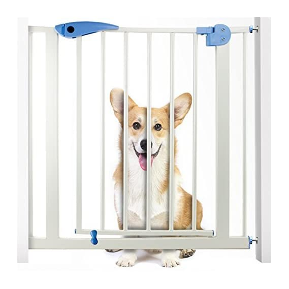 House of Quirk Iron Rod Safety Gate Stair Fence for Kids/Pets