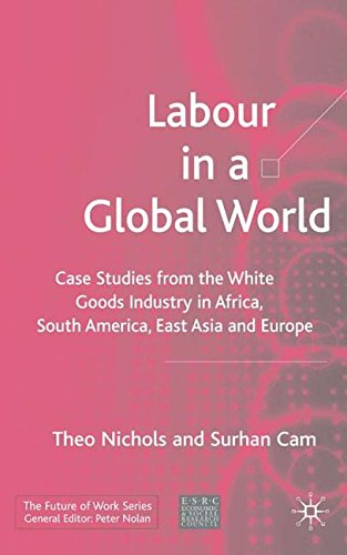 Labour in a Global World: Case Studies from the White Goods Industry in Africa, South America, East Asia and Europe (Future of Work) by Brand: Palgrave Macmillan