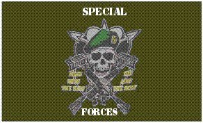 US Special Forces Flag 3 x 5 Brand NEW USA Military 3x5 (Army Forces Special Flag Us)