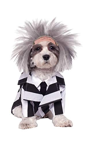 Salem Town Halloween (Rubie's Beetlejuice Pet Costume,)