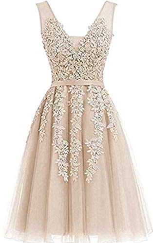 (Annadress Women's Sleeveless Homecoming Dresses Short Net Bridesmaid Dresses Appliques Evening Cocktail Gowns (2, Champagne) )
