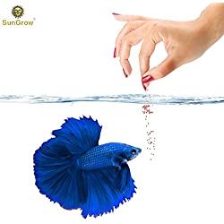 Betta Food Pellets --- Fish Food Promotes Longevity - Gluten Flour imparts color, promotes fin development - Spirulina boosts Immune System - Fish Oil rich in Omega-3 fatty acids controls inflammation