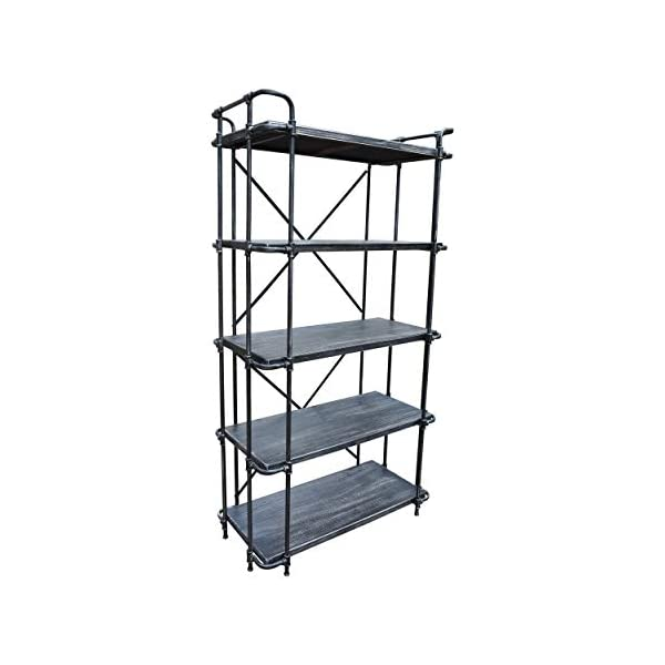 Christopher Knight Home Bret Indoor 5-Tier Book Shelf, Brushed Dark Gray and Pewter, 5