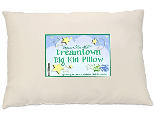 Dreamtown Kids Large Size Kids Pillow (Big Kid Pillow) with a Soft Organic Cotton Shell 16x22, Not Over Stuffed, Made In - Cat Head Shapes