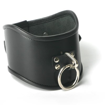 Strict Leather Locking Posture Collar – Small, My Pet Supplies