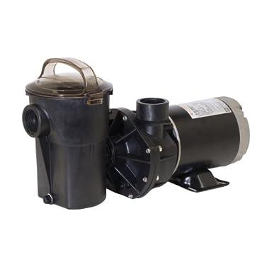 Hayward SP1580X15TL PowerFlo LX 1.5 HP Above-Ground Swimming Pool Pump, Twist Lock Cord