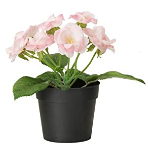 "Ikea Fejka Artificial Potted Plant Small Pink Rose Plant 7"" Tall 3 1/2 Pot Diameter 51"