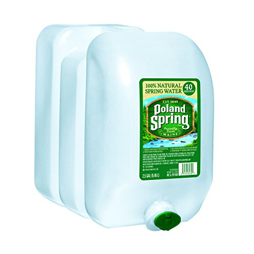 Poland Spring Natural Spring Water, 320 Fluid Ounce