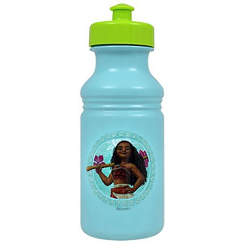 Disney Moana Princess Water Bottle 17 oz Pull Top BPA FREE