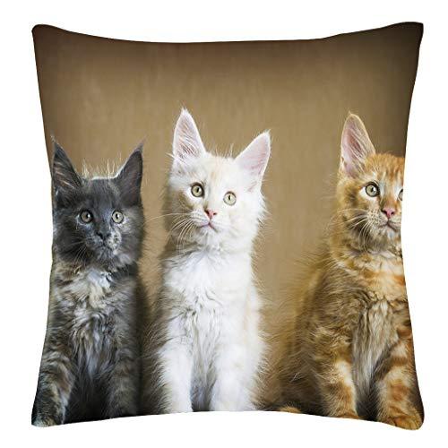 - Sanmenxia Decor Cats Decorative Throw Pillow Case Hand Painted Cushion Cover PillowCases 18X18 inches(Multicolor)