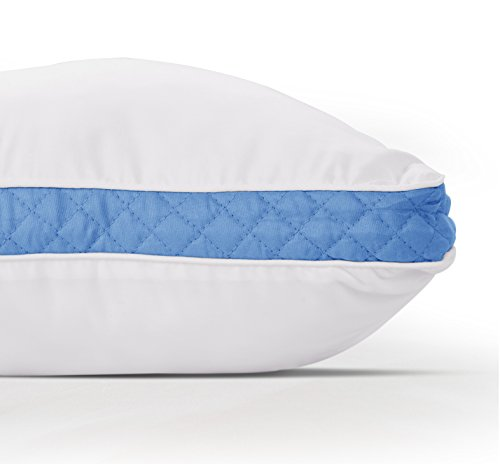 Gusseted Quilted Pillow Standard Queen Bed Pillows