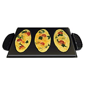 George Foreman Grill Plates