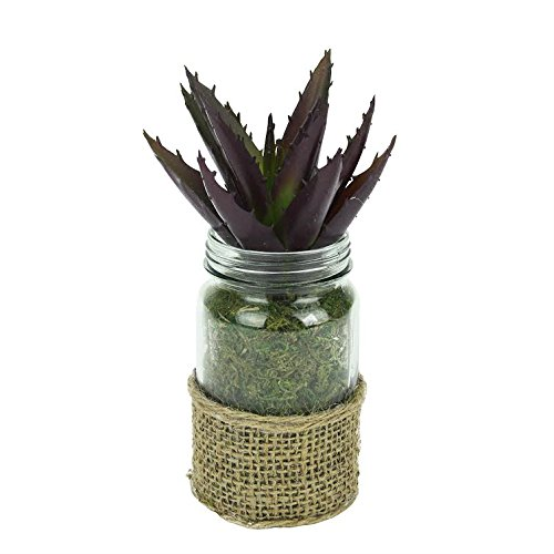 Melrose Artificial Potted Aloe Succulent Plant in Glass Jar with Burlap Grip 7.25