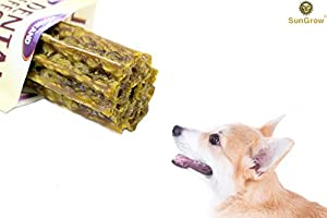 Delicious & Nutritious SunGrow Vegebrand Jumbo Dental Treat for Dogs - All Natural, Refreshing Dog Chew : Preventative Dental Care in an Irressistable Taste