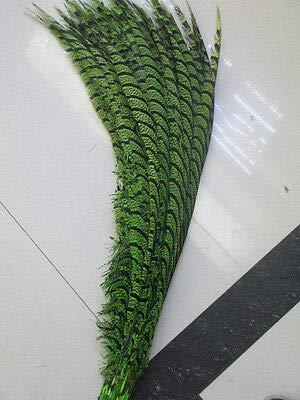 FidgetGear 美しい銅鶏の羽の長さ80-90 cm / 32-36 in。さまざまな色 濃い緑色   B07S86YYB6