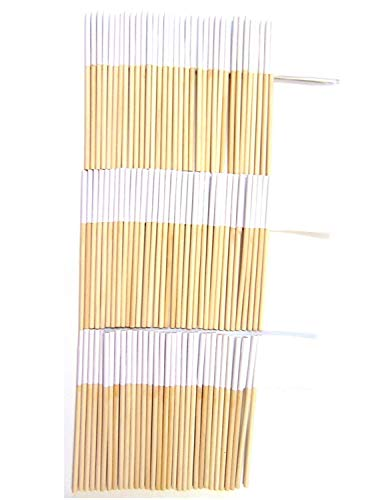 Fruit Place Card Holders - One Bag of Extra Large Solid White Place Card Toothpick Flags, 100 White Flag Toothpicks or Cocktail Picks; Much Larger than Typical Toothpick or Cupcake Flags