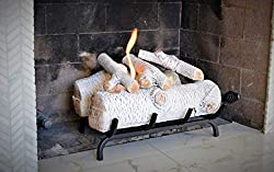 Terra Flame Fireplace Insert by Terra Flame