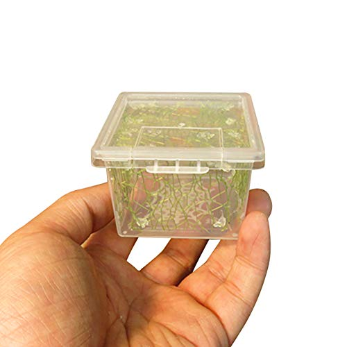 (OMEM 2 Pack Mantis Breeding Box,Insect Incubator,for Orchid Mantis,African Phantom Mantis,Reptile Resting Habitat and Entertainment (XS))
