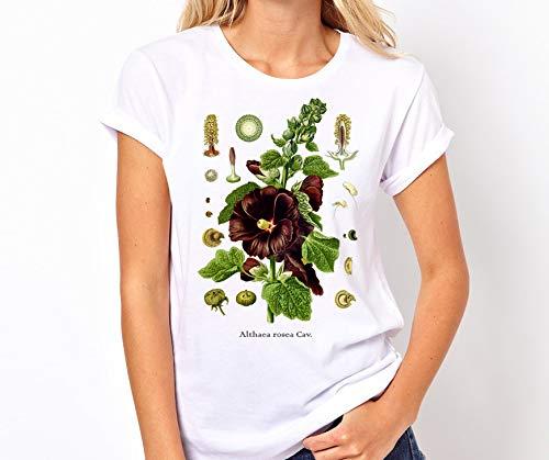 f9e240a60b79 Amazon.com  Botanical t-shirt