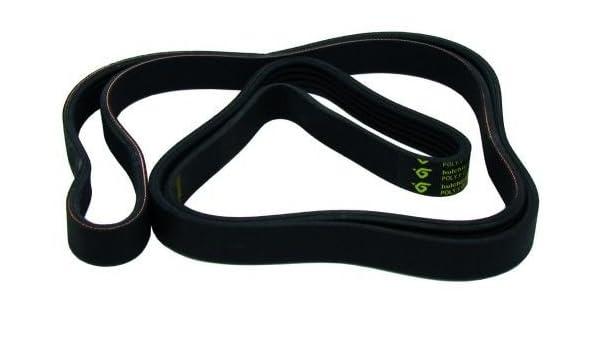 Genuine Lavadora Candy Belt - 1233J5 92130442 09201048: Amazon.es ...