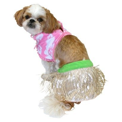 Dog Hula Costume (Hula Girl 2 piece Pet costume - size M)