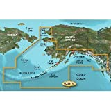 Garmin BlueChart g2 Vision Alaska South Saltwater Map microSD Card