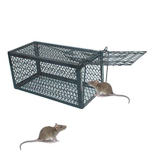 (SCHOME 1 Door Humane Animal Live Cage,Rat Cage Trap for Rat, Mice, Mouse and More Small Rodents 240X115X115MM)