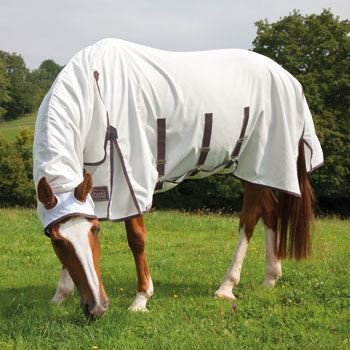 Shires Highlander Plus sweet-itchコンボby Shires B01LFLGIKI