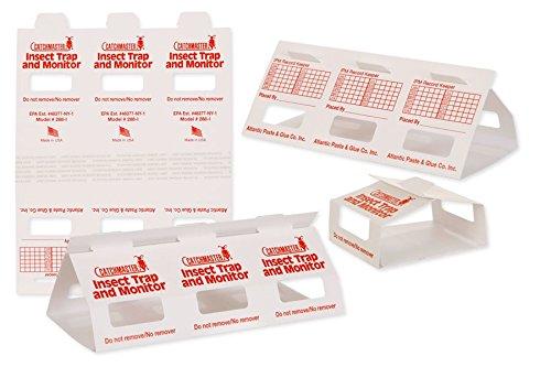 30 Brown Recluse Spider Traps (non-toxic) (Glue Spiders Traps)