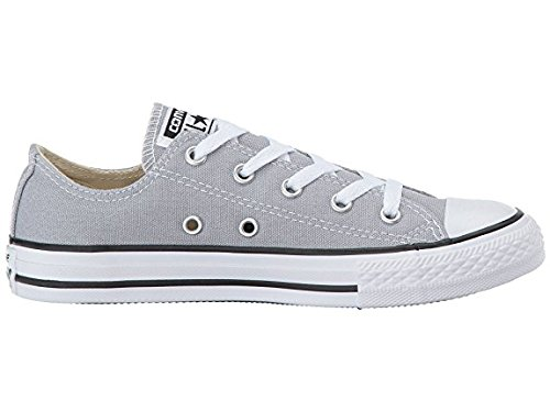 Converse Kids Chuck Taylor All Star Low Top Fashion Shoe, Wolf Grey Size 1Y