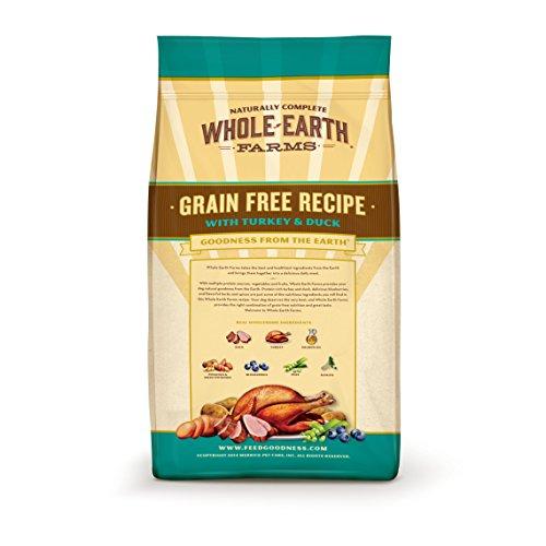 Where To Buy Earth Options Dog Food