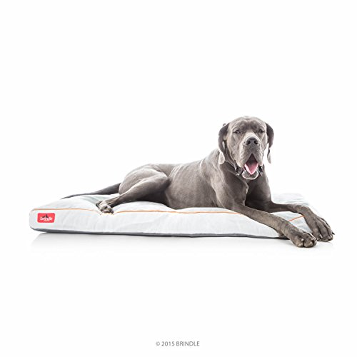 Brindle Soft Shredded Memory Foam Dog Bed with Removable Washable Cover - 52in x 34in - Stone