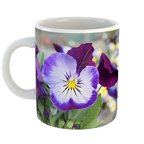 Westlake Art - Flower Pansy - 11oz Coffee Cup Mug - Modern Picture Photography Artwork Home Office Birthday Gift - 11 Ounce (D696-749CE) ()