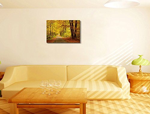 Pathway in The Autumn Forest with Yellow and Red Leaves Home Deoration Wall Decor