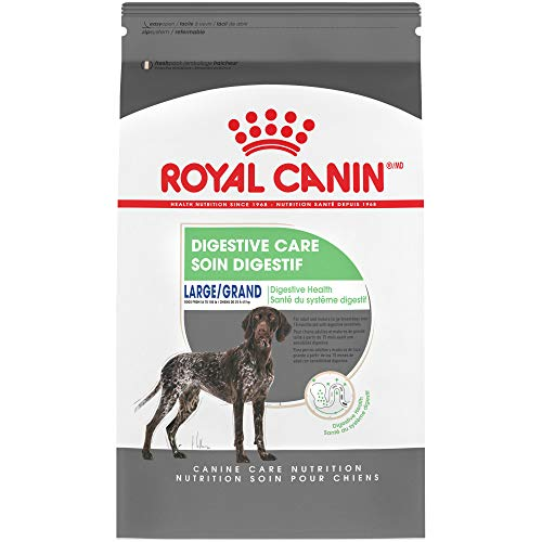 Royal Canin Large Breed Digestive Care Dry Dog Food (30 lb)