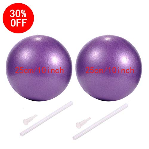 myonly Physical Therapy Exercise Balls, Mini Exercise Ball with Pump, Small Bender Ball for Stability, Barre, Pilates, Yoga, Deep Tissue Massage, Core Training and Physical Therapy (2Pieces(Purple))