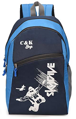 Chris & Kate 28 Ltrs 23 cms Backpack (CKB306LL_Blue & Grey)