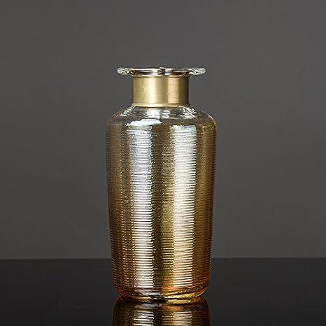 Sjzgd Vase en Verre/Décorations De Salon À La Maison ...