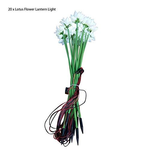 economico online 20pcs   set set set lampada della decorazione romantica di paesaggio della luce imitazione fiore di loto lanterna esterna impermeabile Terra LED Night Light (bianco)  vendite dirette della fabbrica