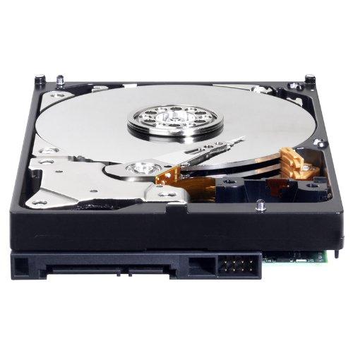 WD Blue 1 TB Desktop Hard Drive: 3.5 Inch, 7200 RPM, SATA 6 Gb/s, 64 MB Cache - WD10EZEX